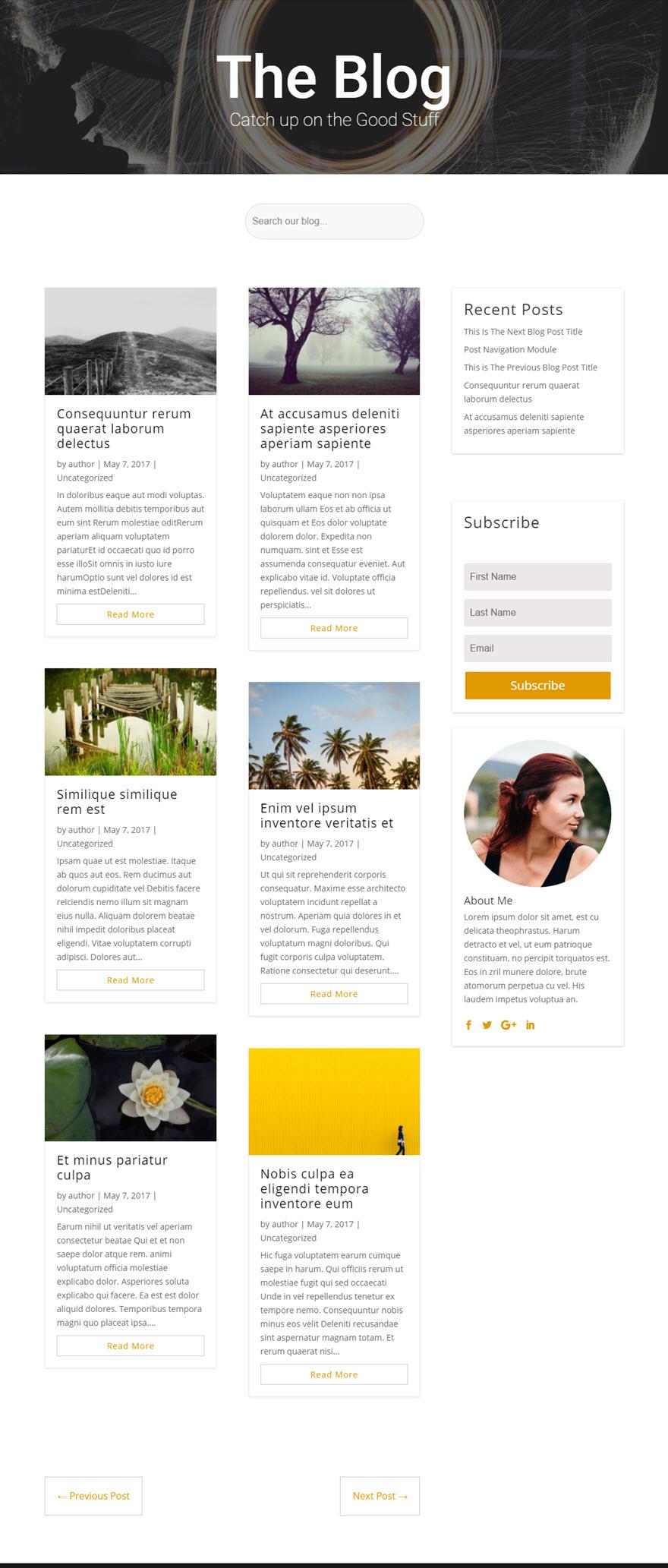 plantillas responsive para bloggers: Divi