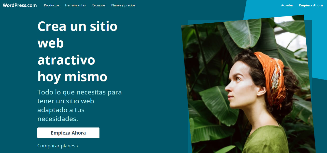 plataformas para crear blogs en 2018: WordPress