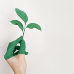 contenido para green marketing