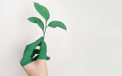 contenido-para-green-marketing