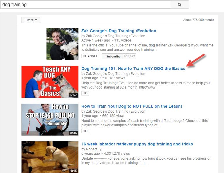 qué son las SERPs: Youtube