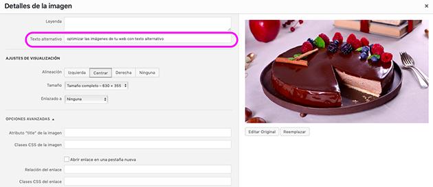 optimizar las imágenes de tu web con texto alternativo