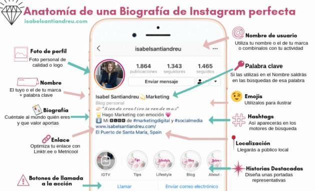 Anatomía de las biografías de Instagram originales